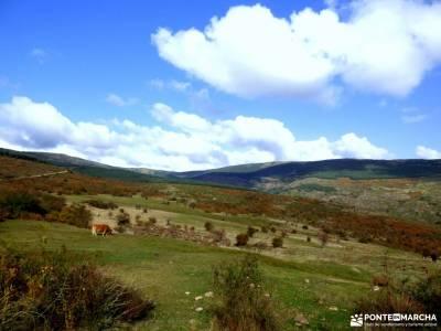 Dehesa Bonita-Abedular Somosierra;sierra de tejeda almijara y alhama sierra del cadi parque natural